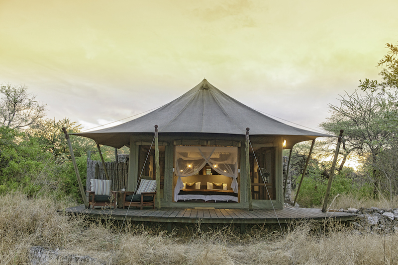 Onguma Tented Camp Accommodation