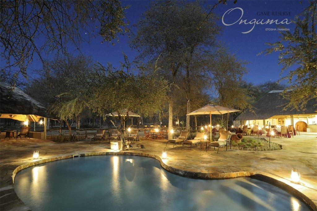Evening view over the pool at Onguma Etosha Aoba