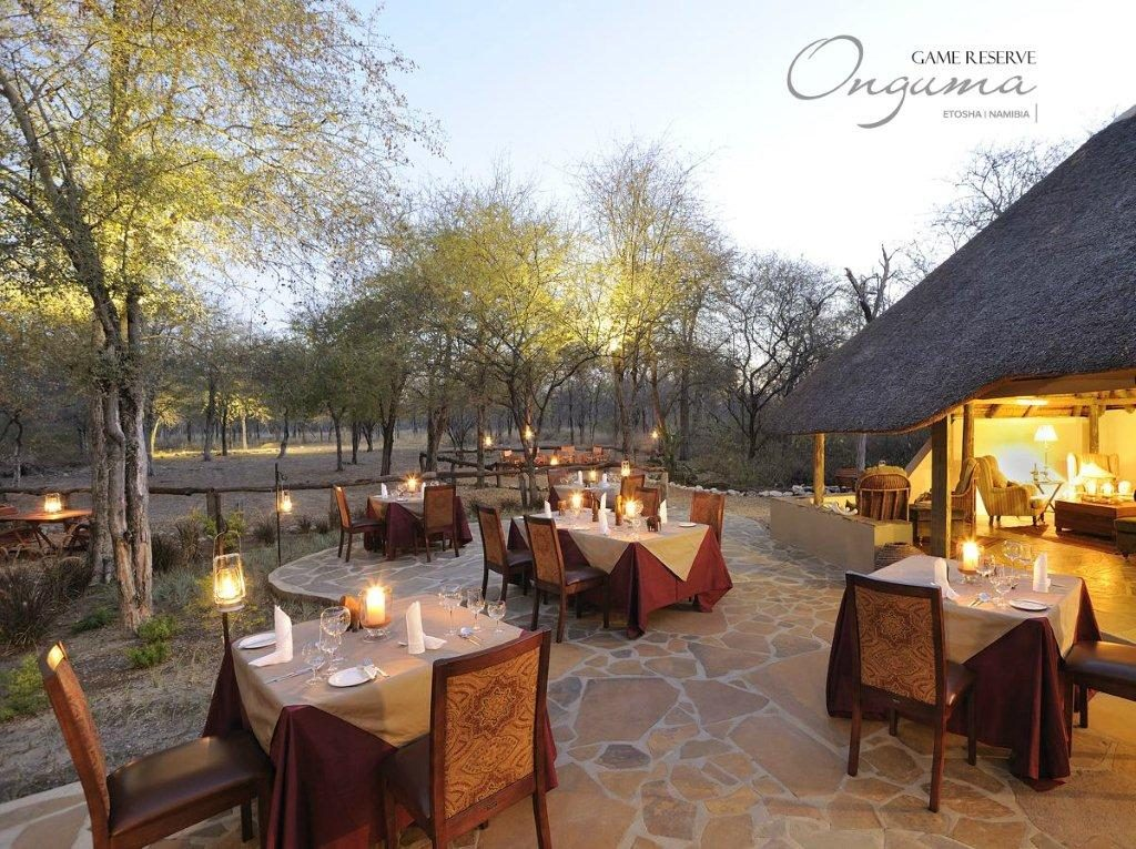 Dinner under the stars at Onguma Etosha Aoba