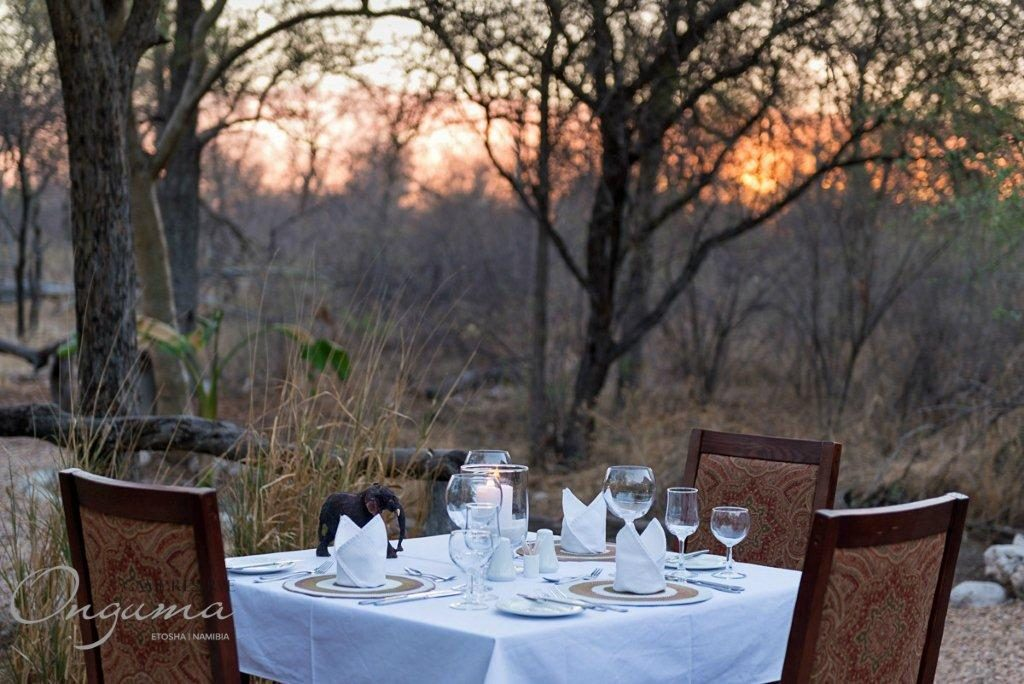 Dinner table setting at Onguma Etosha Aoba