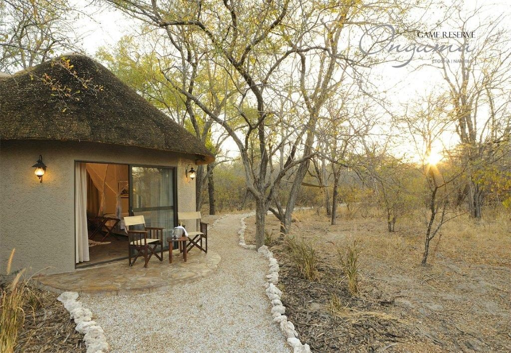 Pathway to the Explorer bungalow at Onguma Etosha Aoba
