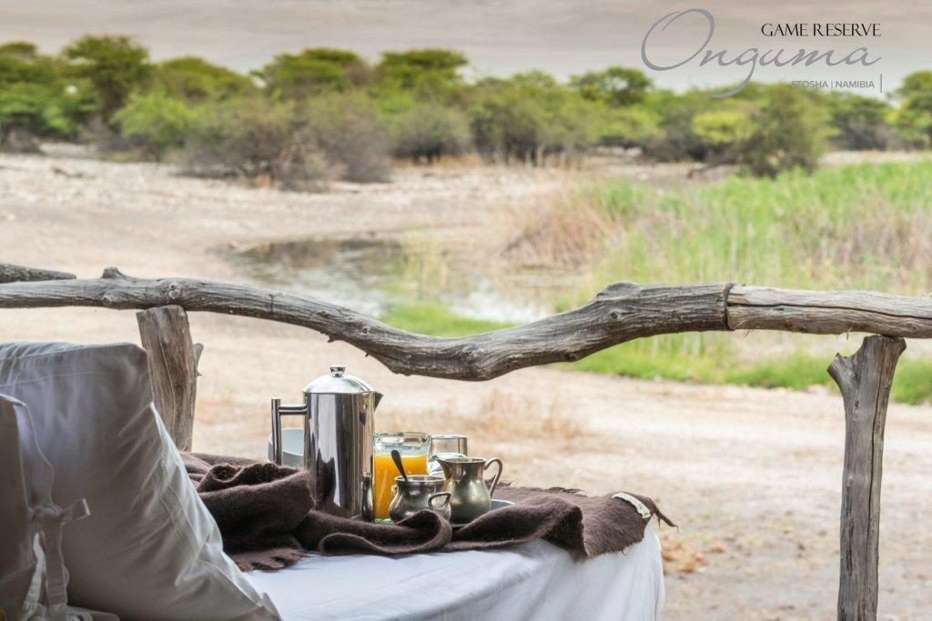 Morning coffee overlooking the Onguma Tree top camp waterhole