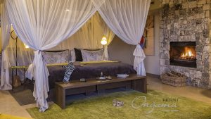 Onguma Bush suite